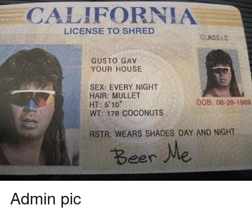"""Sex, California, and Hair: CALIFORNIA  LICENSE TO SHRED  CLASS:C  GUSTO GAV  YOUR HOUSE  SEX: EVERY NIGHT  HAIR: MULLET  HT: 510""""  WT; 178 COCONUTS  DOB: 08-29-1969  RSTR: WEARS SHADES DAY AND NIGHT  Beere Admin pic"""
