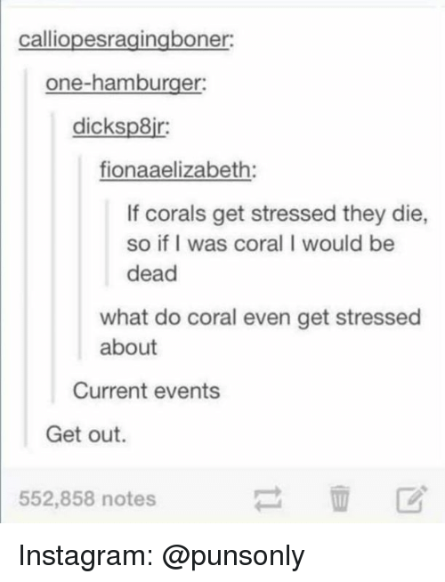Instagram, Current Events, and Hamburger: calliopesragingboner  one-hamburger  dicksp8ir  fionaaelizabeth  If corals get stressed they die,  so if I was coral I would be  dead  what do coral even get stressed  about  Current events  Get out.  552,858 notes Instagram: @punsonly