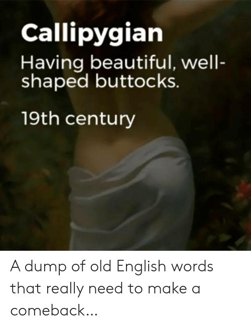 old english: Callipygian  Having beautiful, well-  shaped buttocks.  19th century A dump of old English words that really need to make a comeback…