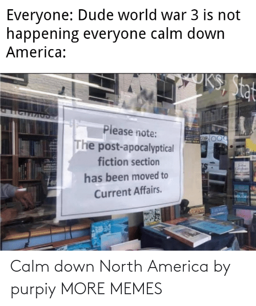 America: Calm down North America by purpiy MORE MEMES