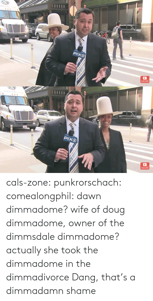 shame: cals-zone: punkrorschach:  comealongphil: dawn dimmadome? wife of doug dimmadome, owner of the dimmsdale dimmadome?  actually she took the dimmadome in the dimmadivorce     Dang, that's a dimmadamn shame