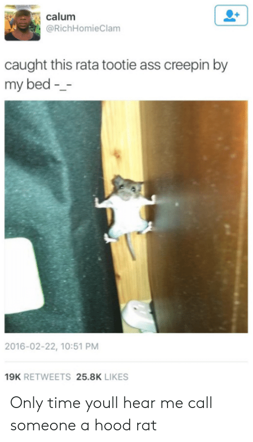 A Hood: calum  @RichHomieClam  caught this rata tootie ass creepin by  my bed -  2016-02-22, 10:51 PM  19K RETWEETS 25.8K LIKES Only time youll hear me call someone a hood rat