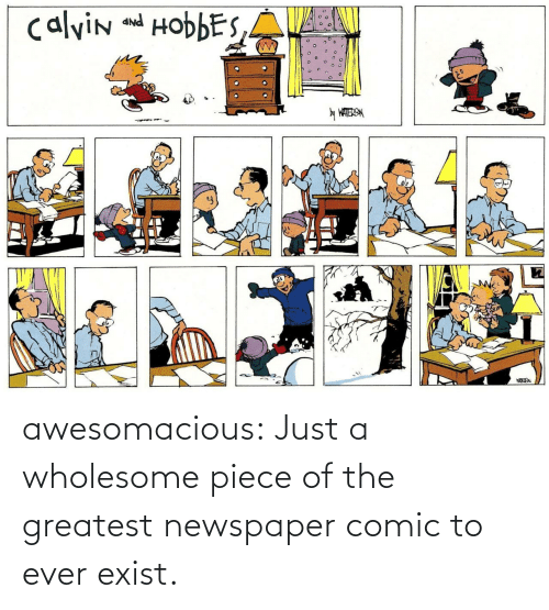 newspaper: calvin and HobbES,A  PNP  y WATERSN awesomacious:  Just a wholesome piece of the greatest newspaper comic to ever exist.