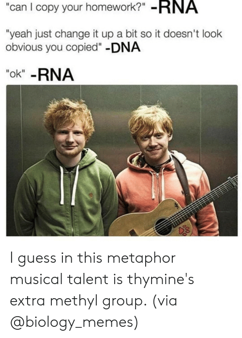 "Change It Up A Bit: can I copy your homework?"" -RNA  ""yeah just change it up a bit so it doesn't look  obvious you copied""-DNA  ""ok"" -RNA I guess in this metaphor musical talent is thymine's extra methyl group. (via @biology_memes)"