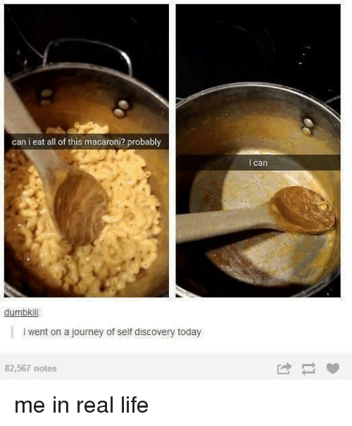self discovery: can i eat all of this macaroni? probably  dumbkili  l went on ajourney of self discovery today  82,567 notes  can me in real life