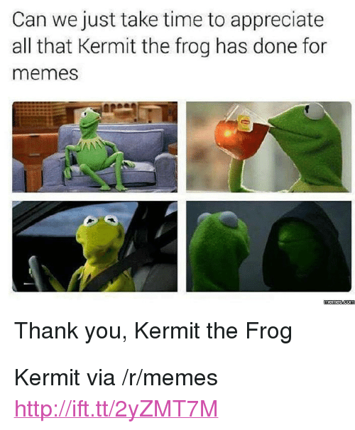 """Kermit the Frog: Can we just take time to appreciate  all that Kermit the frog has done for  memes  Thank you, Kermit the Frog <p>Kermit via /r/memes <a href=""""http://ift.tt/2yZMT7M"""">http://ift.tt/2yZMT7M</a></p>"""