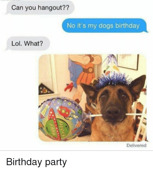 Lol What: Can you hangout??  No it's my dogs birthday  Lol. What?  Delivered Birthday party