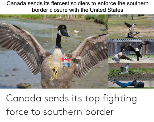Southern: Canada sends its top fighting force to southern border