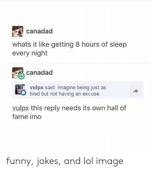 funny jokes: canadad  whats it like getting 8 hours of sleep  every night  canadad  vulpx said: imagine being just as  tired but not having an excuse  vulpx this reply needs its own hall of  fame imo funny, jokes, and lol image