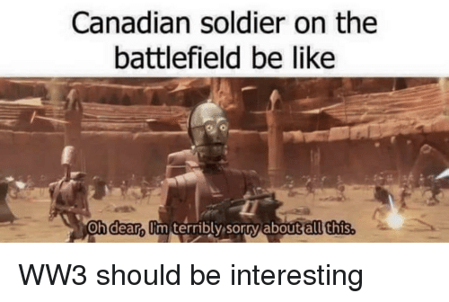 Battlefield: Canadian soldier on the  battlefield be like  hldeanumiterribly, sor0%abouttalt this WW3 should be interesting