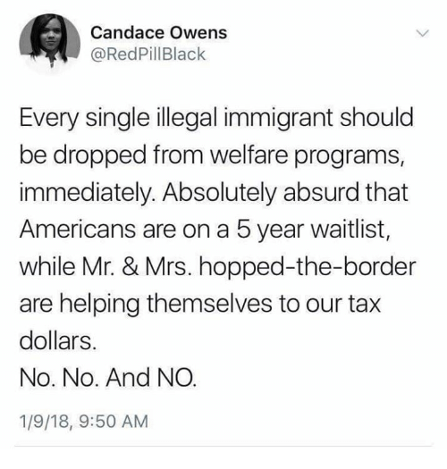 Memes, Absurd, and Single: Candace Owens  @RedPillBlack  Every single illegal immigrant should  be dropped from welfare programs,  immediately. Absolutely absurd that  Americans are on a 5 year waitlist,  while Mr. & Mrs. hopped-the-border  are helping themselves to our tax  dollars.  No. No. And NO  1/9/18, 9:50 AM