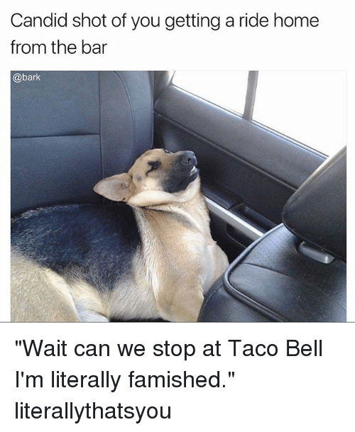 """Candidness: Candid shot of you getting a ride home  from the bar  @bark """"Wait can we stop at Taco Bell I'm literally famished."""" literallythatsyou"""