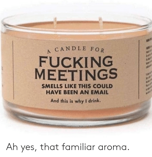 aroma: CANDLE FOR  FUCKING  MEETINGS  SMELLS LIKE THIS COULD  HAVE BEEN AN EMAIL  And this is why I drink. Ah yes, that familiar aroma.