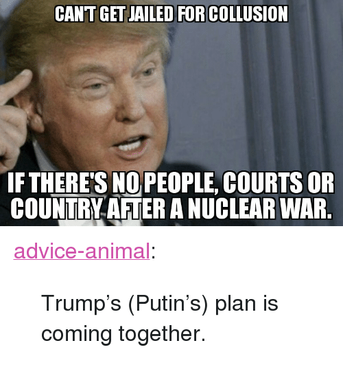 "Advice, Tumblr, and Animal: CANT GET JAILED FOR COLLUSION  FTHERE'S NOPEOPLE, COURTS OR  COUNTRY AFTER A NUCLEAR WAR <p><a href=""http://advice-animal.tumblr.com/post/169280716843/trumps-putins-plan-is-coming-together"" class=""tumblr_blog"">advice-animal</a>:</p>  <blockquote><p>Trump's (Putin's) plan is coming together.</p></blockquote>"