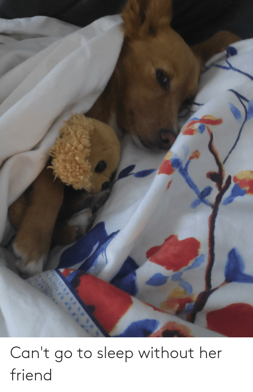 go to sleep: Can't go to sleep without her friend