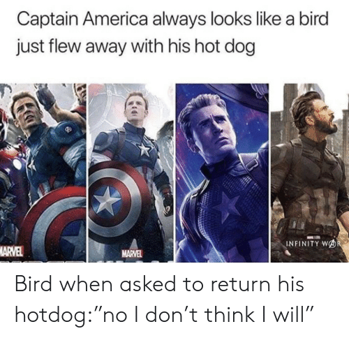 "America, Infinity, and Marvel: Captain America always looks like a bird  just flew away with his hot dog  INFINITY WOR  MARVEL  MARVEL Bird when asked to return his hotdog:""no I don't think I will"""