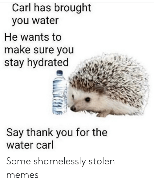 Say Thank: Carl has brought  you water  He wants to  make sure you  stay hydrated  Say thank you for the  water carl Some shamelessly stolen memes