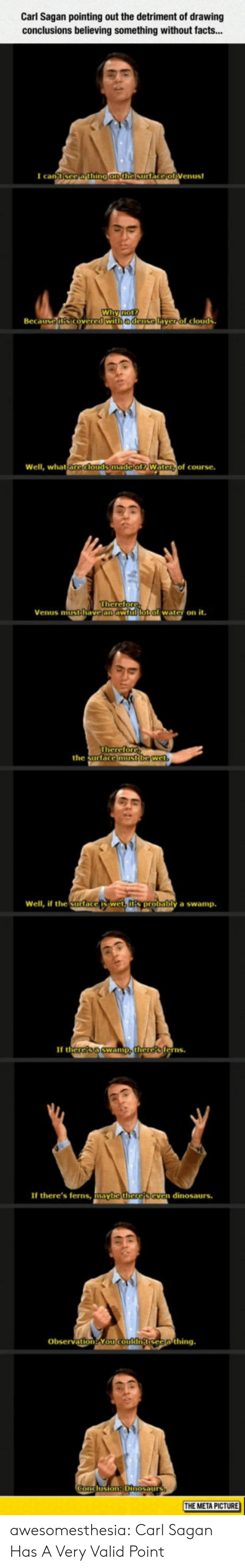 Facts, Tumblr, and Yo: Carl Sagan pointing out the detriment of drawing  conclusions believing something without facts...  I can  Wi  Beca  edense  yerol clouds  Well, what  of course.  Venus mitithave an aw  water on it.  the surtace  Well, if the Surlace  y a swamp.  If th  erns  If there's ferns, mayb  n dinosaurs.  Obsevation Yo  THE META PICTURE awesomesthesia:  Carl Sagan Has A Very Valid Point