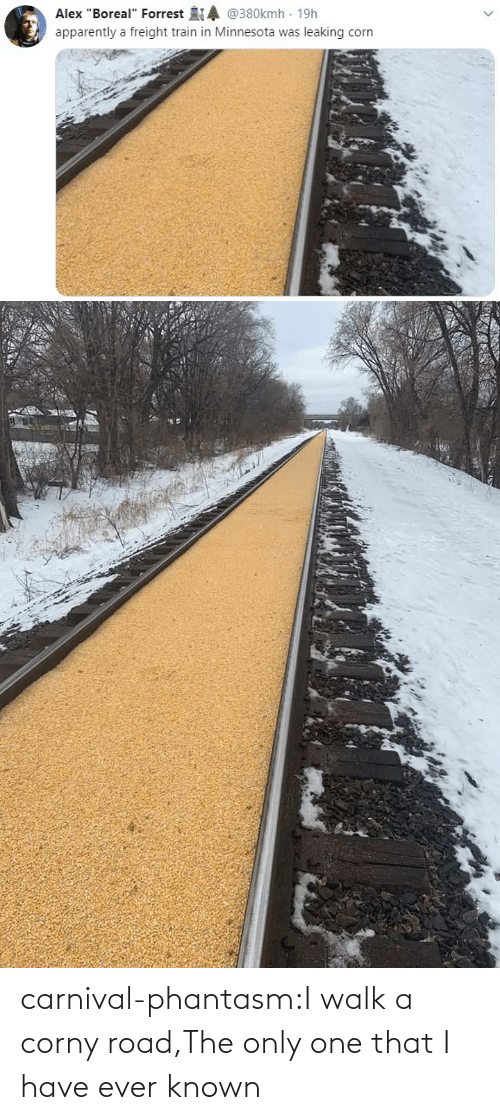 road: carnival-phantasm:I walk a corny road,The only one that I have ever known