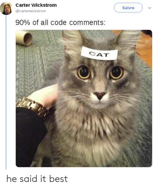 Carter: Carter Wickstrom  Suivre  @carterwickstrom  90% of all code comments:  CAT he said it best