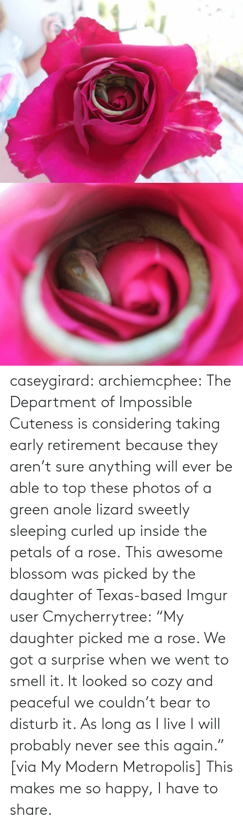 "share: caseygirard:  archiemcphee:   The Department of Impossible Cuteness is considering taking early retirement because they aren't sure anything will ever be able to top these photos of a green anole lizard sweetly sleeping curled up inside the petals of a rose. This awesome blossom was picked by the daughter of Texas-based Imgur user Cmycherrytree: ""My daughter picked me a rose. We got a surprise when we went to smell it. It looked so cozy and peaceful we couldn't bear to disturb it. As long as I live I will probably never see this again."" [via My Modern Metropolis]   This makes me so happy, I have to share."