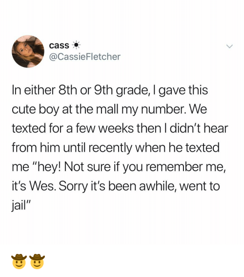 """Cute, Jail, and Memes: cass  @CassieFletcher  In either 8th or 9th grade, I gave this  cute boy at the mall my number. We  texted for a few weeks then I didn't hear  from him until recently when he texted  me """"hey! Not sure if you remember me,  it's Wes. Sorry it's been awhile, went to  Jail"""" 🤠🤠"""