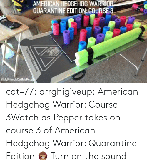 turn: cat–77: arrghigiveup:   American Hedgehog Warrior: Course 3Watch as Pepper takes on course 3 of American Hedgehog Warrior: Quarantine Edition 🦔     Turn on the sound