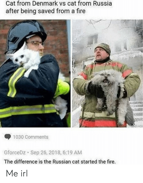 Fire, Denmark, and Russia: Cat from Denmark vs cat from Russia  after being saved from a fire  1030 Comments  GforceDz Sep 26, 2018, 6:19 AM  The difference is the Russian cat started the fire.. Me irl