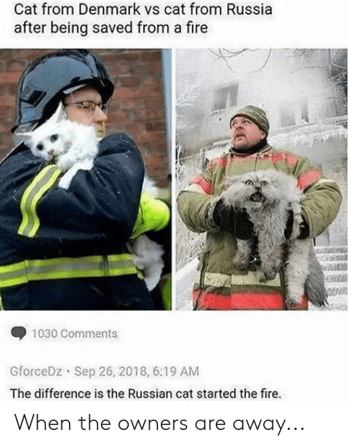 Fire, Denmark, and Russia: Cat from Denmark vs cat from Russia  after being saved from a fire  1030 Comments  GforceDz Sep 26, 2018, 6:19 AM  The difference is the Russian cat started the fire. When the owners are away...