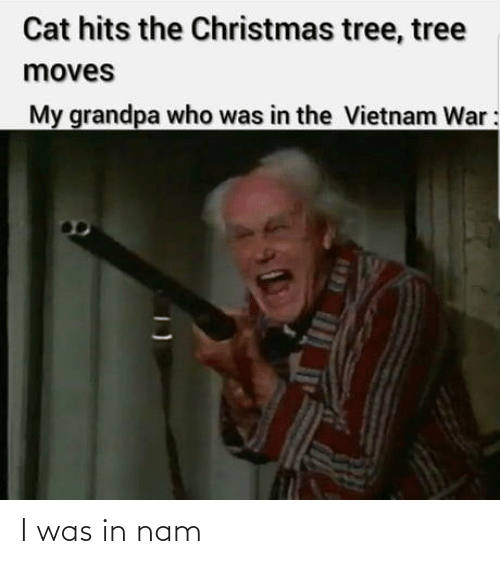 Tree: Cat hits the Christmas tree, tree  moves  My grandpa who was in the Vietnam War: I was in nam