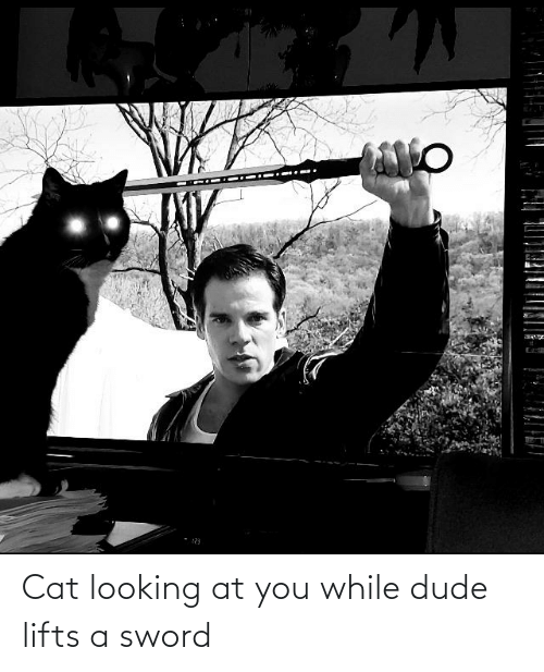 Lifts: Cat looking at you while dude lifts a sword