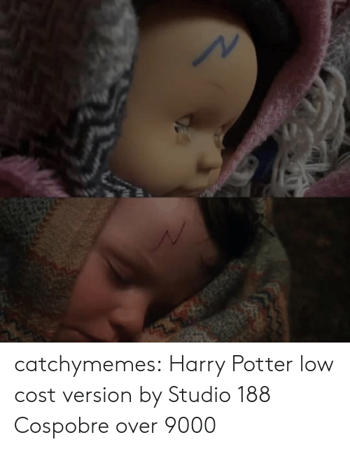 Harry Potter, Instagram, and Tumblr: catchymemes: Harry Potter low cost version by Studio 188  Cospobre over 9000