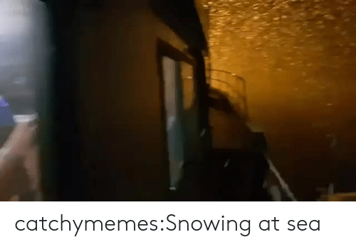 Facebook, Target, and Tumblr: catchymemes:Snowing at sea