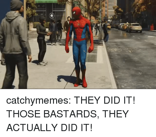 Tumblr, Blog, and Com: catchymemes:  THEY DID IT! THOSE BASTARDS, THEY ACTUALLY DID IT!