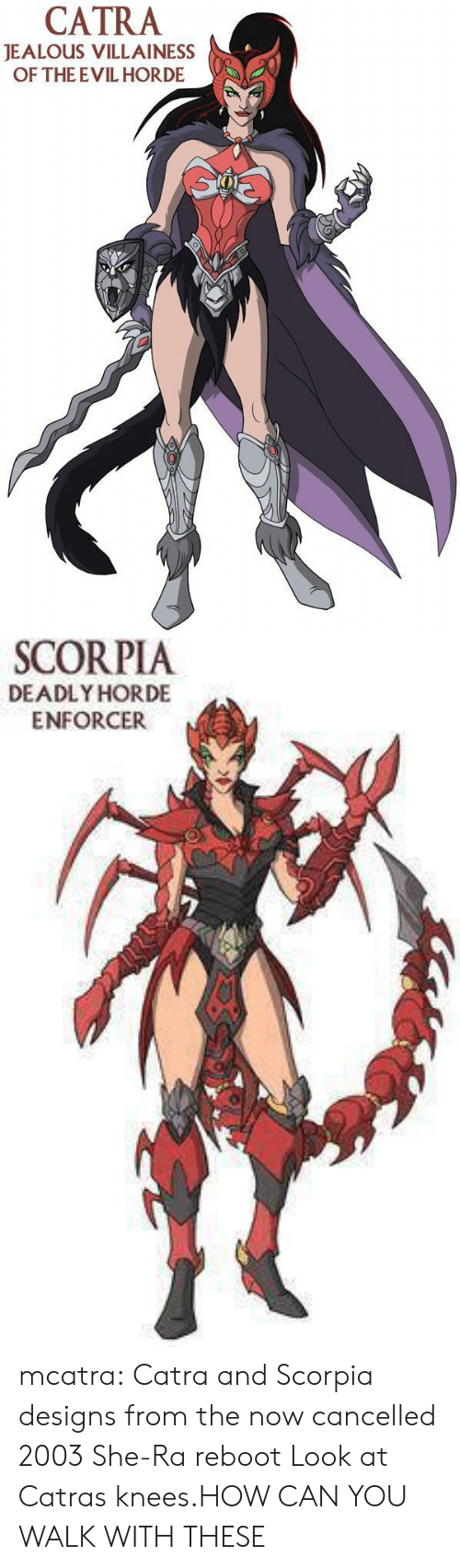 Enforcer: CATRA  JEALOUS VILLAINESS  OF THE EVIL HORDE   SCORPIA  DEADLY HORDE  ENFORCER mcatra:  Catra and Scorpia designs from the now cancelled 2003 She-Ra reboot  Look at Catras knees.HOW CAN YOU WALK WITH THESE