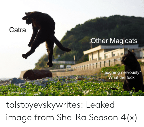 "Tumblr, Blog, and Fuck: Catra  Other Magicats  ""laughing nervously*  What the fuck  PHOTO *Kisakata hiroyuki tolstoyevskywrites:  Leaked image from She-Ra Season 4(x)"