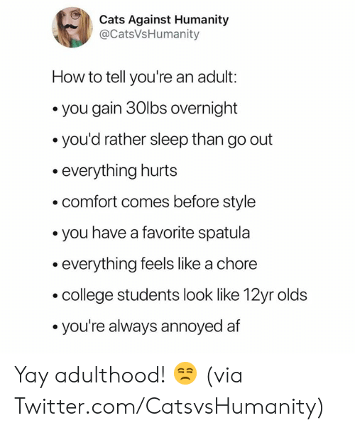 college students: Cats Against Humanity  @CatsVsHumanity  How to tell you're an adult:  you gain 30lbs overnight  you'd rather sleep than go out  everything hurts  comfort comes before style  you have a favorite spatula  everything feels like a chore  college students look like 12yr olds  you're always annoyed af Yay adulthood! 😒  (via Twitter.com/CatsvsHumanity)