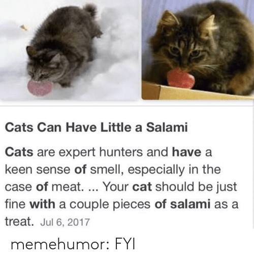 Cats Are: Cats Can Have Little a Salami  Cats are expert hunters and have a  keen sense of smell, especially in the  case of meat. ... Your cat should be just  fine with a couple pieces of salami as a  treat. Jul 6, 2017 memehumor:  FYI
