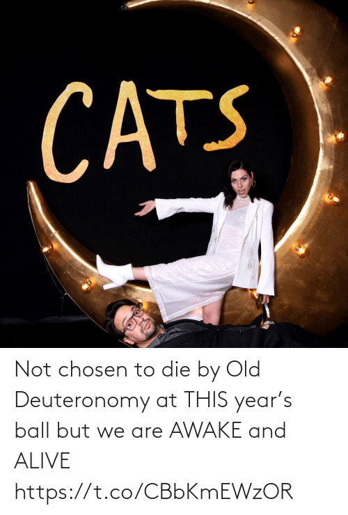 chosen: CATS Not chosen to die by Old Deuteronomy at THIS year's ball but we are AWAKE and ALIVE https://t.co/CBbKmEWzOR
