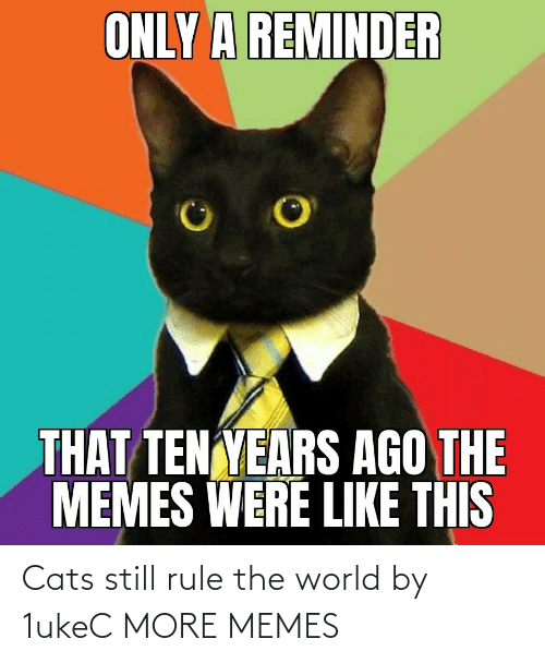 still: Cats still rule the world by 1ukeC MORE MEMES