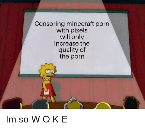 Pixels: Censoring minecraft porn  with pixels  will only  increase the  quality of  the porn Im so W O K E