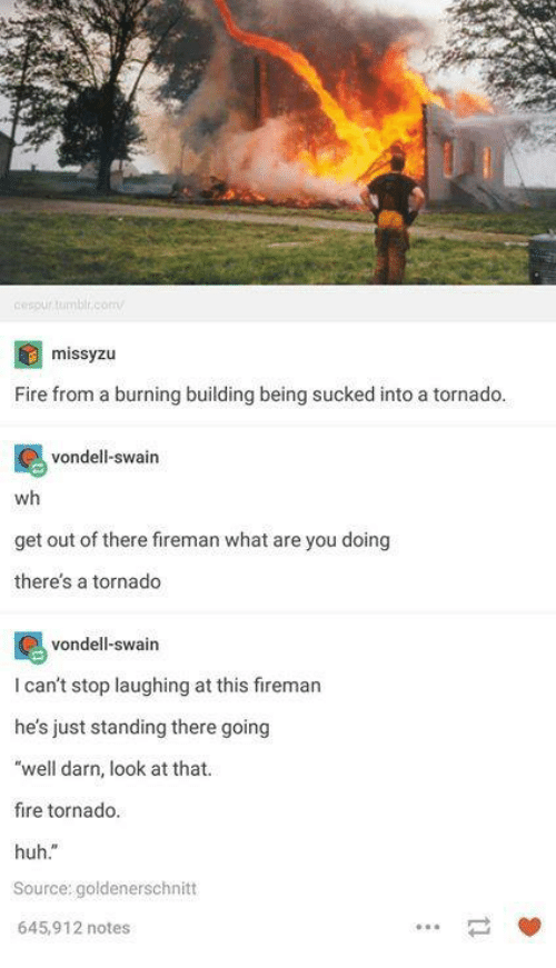 """Darns: cespurtumbl.comv  missyzu  Fire from a burning building being sucked into a tornado  vondell-swain  wh  get out of there fireman what are you doing  theres a tornado  vondell-swain  I can't stop laughing at this firemar  he's just standing there going  """"well darn, look at that.  fire tornado.  huh.""""  Source: goldenerschnitt  645,912 notes  一 箩"""