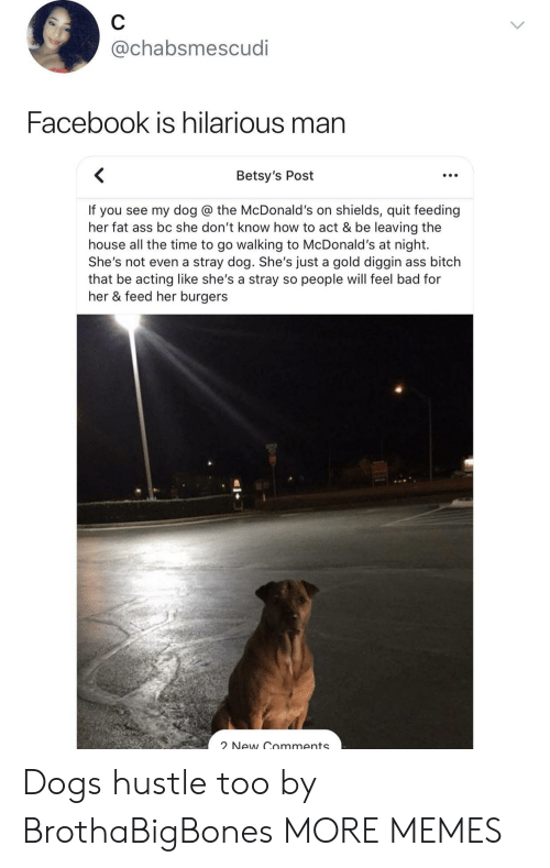 Ass, Bad, and Bitch: @chabsmescudi  Facebook is hilarious man  Betsy's Post  If you see my dog @ the McDonald's on shields, quit feeding  her fat ass bc she don't know how to act & be leaving the  house all the time to go walking to McDonald's at night.  She's not even a stray dog. She's just a gold diggin ass bitch  that be acting like she's a stray so people will feel bad for  her & feed her burgers  New Gnmments Dogs hustle too by BrothaBigBones MORE MEMES
