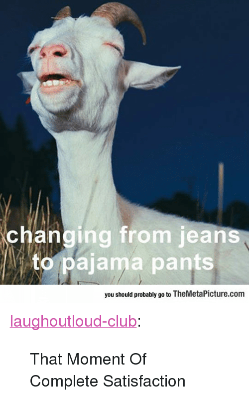 """pajama: changing from jeans  to pajama pants  you should probably go to TheMetaPicture.com <p><a href=""""http://laughoutloud-club.tumblr.com/post/166854423398/that-moment-of-complete-satisfaction"""" class=""""tumblr_blog"""">laughoutloud-club</a>:</p>  <blockquote><p>That Moment Of Complete Satisfaction</p></blockquote>"""
