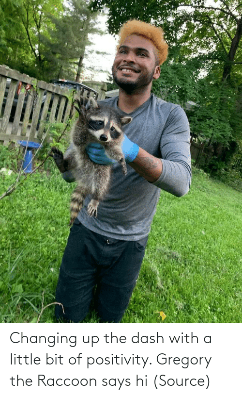 Aww, Reddit, and Target: Changing up the dash with a little bit of positivity. Gregory the Raccoon says hi (Source)
