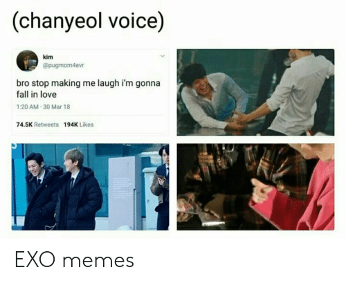 Fall, Love, and Memes: (chanyeol voice)  kim  @pugmom4evr  bro stop making me laugh i'm gonna  fall in love  1:20 AM 30 Mar 18  74.5K Retweets  194K Likes EXO memes