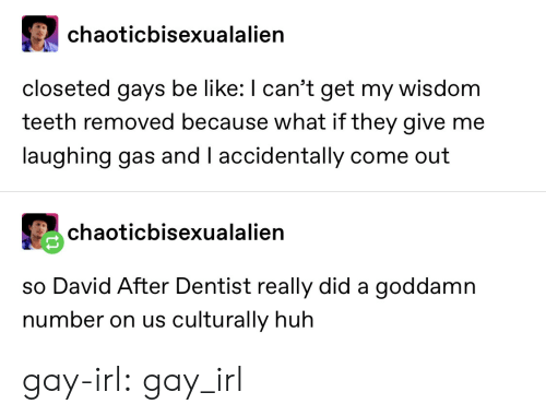 Because What: chaoticbisexualalien  closeted gays be like: I can't get my wisdom  teeth removed because what if they give me  laughing gas and I accidentally come out  chaoticbisexualalien  so David After Dentist really did a goddamn  number on us culturally huh gay-irl: gay_irl