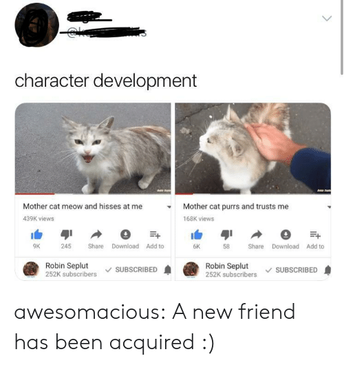 Tumblr, Blog, and Been: character development  Mother cat meow and hisses at me  Mother cat purrs and trusts me  439K views  168K views  6K  9K  245 Share Download Add to  58 Share Download Add to  Robin Seplut  252K subscribers SUBSCRIBED  Robin Seplut  252K subscribers SUBSCRIBED awesomacious:  A new friend has been acquired :)