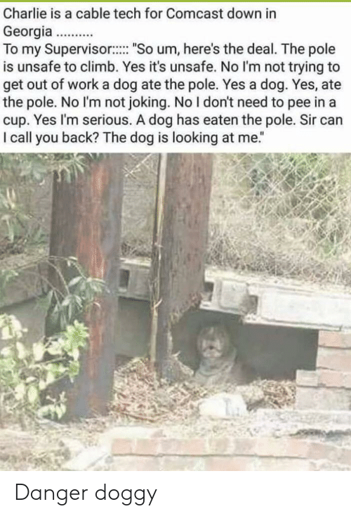 "supervisor: Charlie is a cable tech for Comcast down in  Georgia..  To my Supervisor: ""So um, here's the deal. The pole  is unsafe to climb. Yes it's unsafe. No l'm not trying to  get out of work a dog ate the pole. Yes a dog. Yes, ate  the pole. No I'm not joking. No I don't need to pee in a  cup. Yes I'm serious. A dog has eaten the pole. Sir can  I call you back? The dog is looking at me."" Danger doggy"