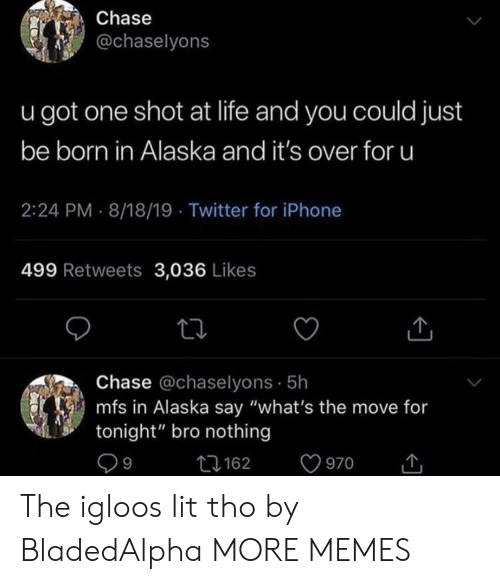 "Alaska: Chase  @chaselyons  u got one shot at life and you could just  be born in Alaska and it's over for u  2:24 PM 8/18/19 Twitter for iPhone  499 Retweets 3,036 Likes  Chase @chaselyons 5h  mfs in Alaska say ""what's the move for  tonight"" bro nothing  9  162  970 The igloos lit tho by BladedAlpha MORE MEMES"